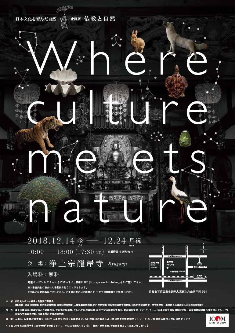 「自然史博物館が仕かける 「Where culture meets nature」展」赤坂志乃