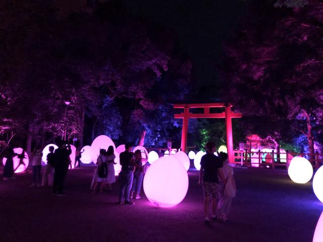 夏の夜の下鴨神社に幻想アート・スポットが三度あらわる!/鴨神社 糺の森の光の祭 Art by teamLab - TOKIO インカラミ